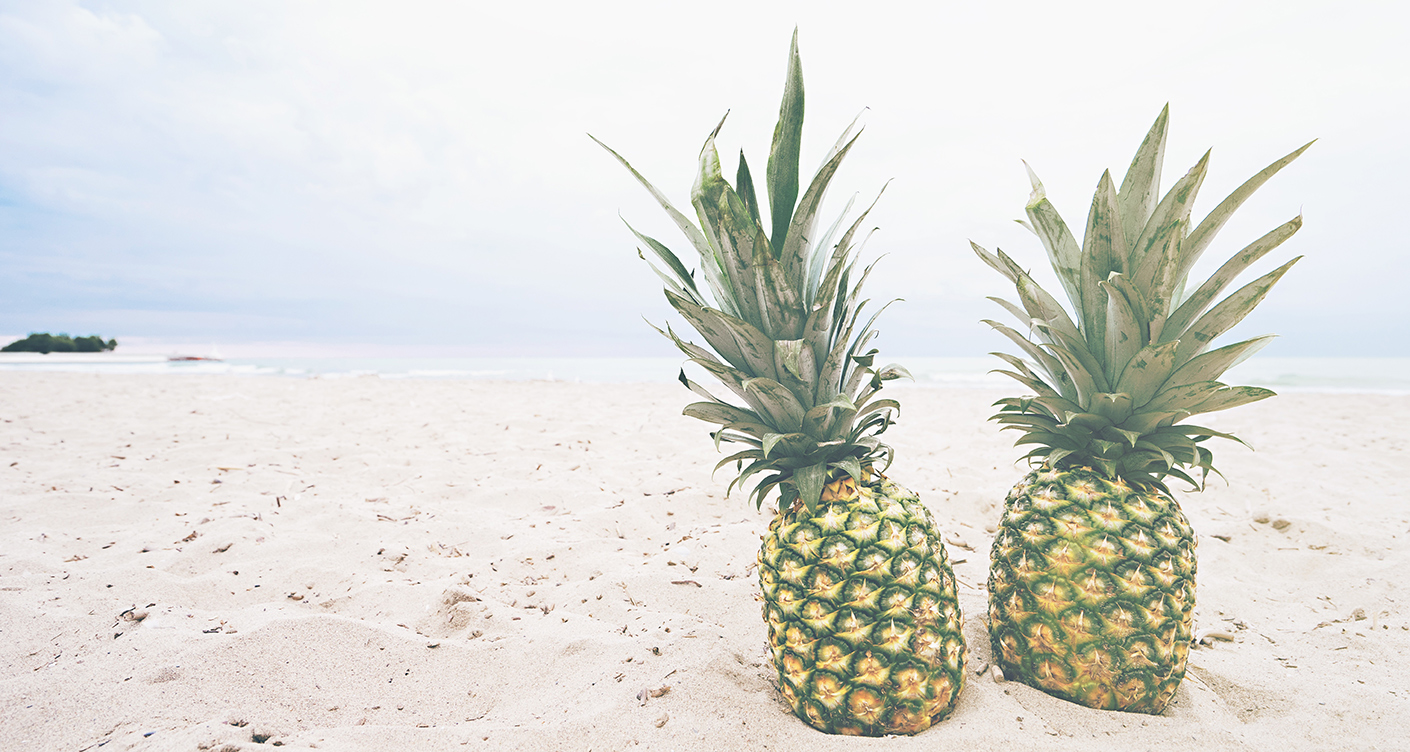 pineapple-supply-co-83073