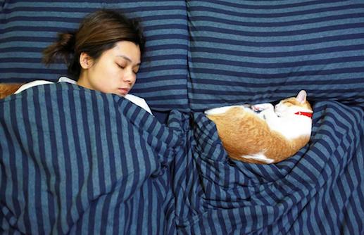 Mädchen im Bett mit Katze