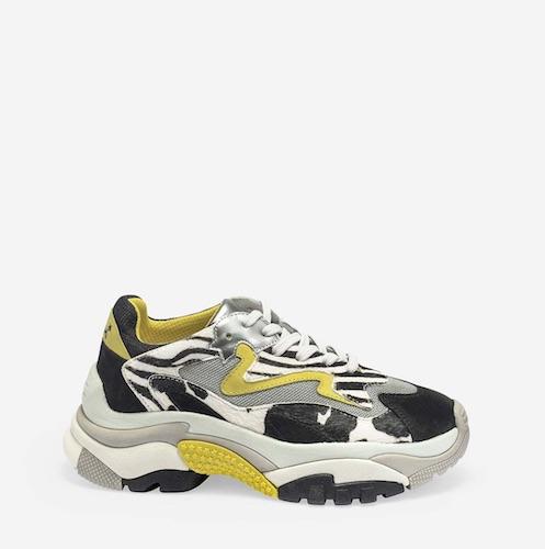 animal sneaker
